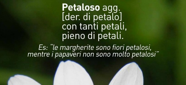 petaloso-nationalgeo